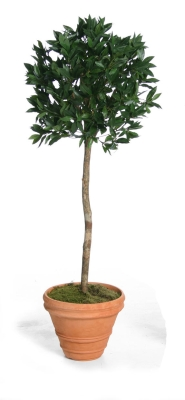 5ft Artificial Bay Tree Ball on Stem