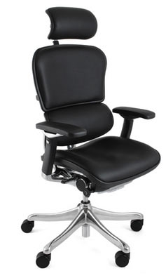 Ergohuman Plus Ergonomic Leather Office Chair with Headrest
