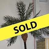 10ft Artificial Palm Tree
